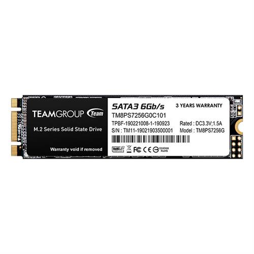 TeamGROUP MS30 M.2 SATA SSD - 256GB